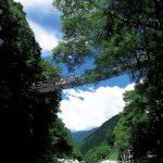 祖谷のかずら橋!徳島県!アクセス・駐車場情報・見どころ・観光列車について紹介【絶景 秘境】